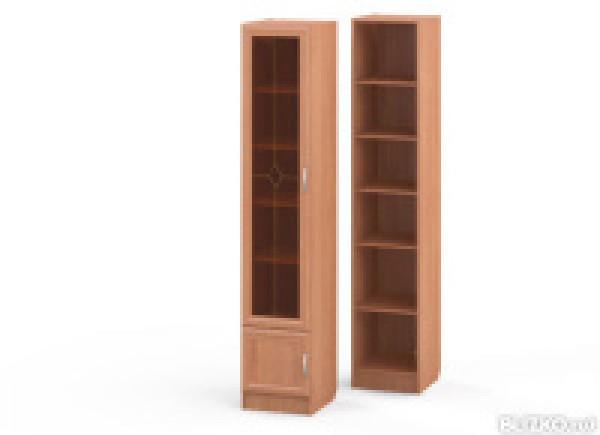 Книжный шкаф ШК-10